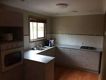 granny flat 1 bedroom Weston Cessnock Area Preview