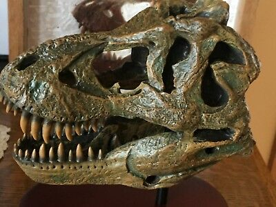 Dinosaur T Rex Skull model w/ stand and brass  name plate jurassic park - T Rex Model