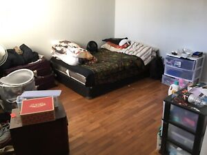 Looking for female sublet