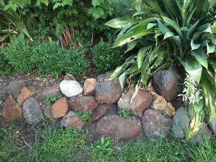 Rocks for garden - free - 150 to 200