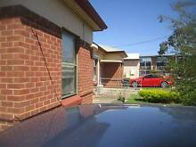 Lovely house to share in Pennington Pennington Charles Sturt Area Preview