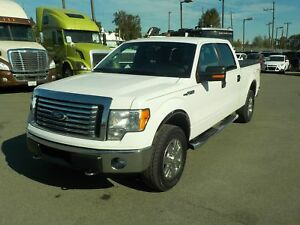 2012 Ford F-150 XLT XTR SuperCrew 6.5-ft. Bed 4WD w/ Tonneau Cov