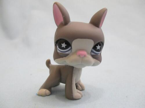 Купить Littlest Pet Shop LPS Gray & White BOSTON TERRIER #958 STAR Eyes Dog Authentic