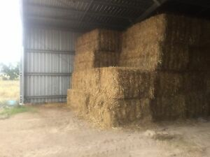 Oaten Hay For Sale Silver Spur Goondiwindi Area Preview