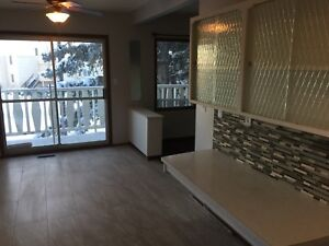 Fully renovated duplex for rent at Dalhousie!