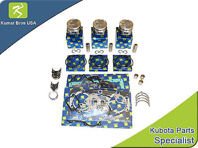 New Kubota D1005 Overhaul Kit .5