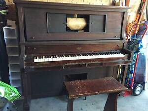 Pianola - Adam Schaaf Claritone Broadmeadow Newcastle Area Preview