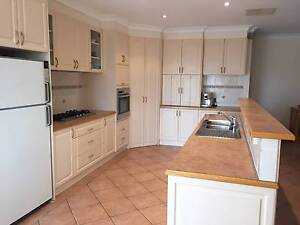 Kitchen with Miele Oven and Highland Cooktop Jerrabomberra Queanbeyan Area Preview