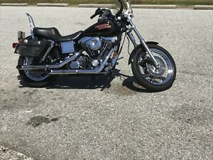 1997 Harley-Davidson Dana low rider