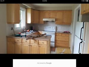 Kitchen cabinets and pantry good condition