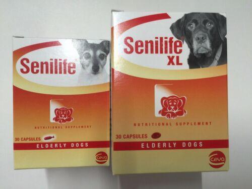Ceva Senilife Brain Function Support For Elderly Dogs Supplement Aging Pet 30 Caps