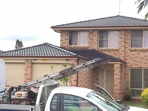 Roof painting and cleaning ( free quote , good price ) Cranebrook Penrith Area Preview