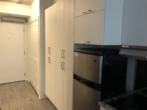Subleasing Apartment - Available June 1