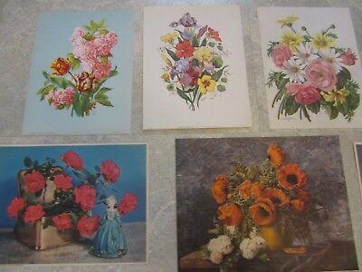 Lot Of 11 Old Vintage 1940 s FLOWER - ART PRINTS - Flowers / Floral Arrangements - $17.99