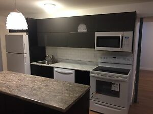 2 Bedroom Basement Rental - South Lakeview
