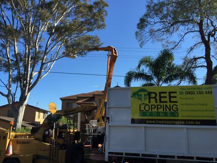 Tree lopping sydney North Ryde Ryde Area Preview