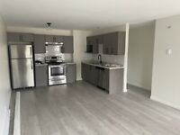Multiple 2 Bedroom 1 Bathroom Renovated Apartments in Vernon BC