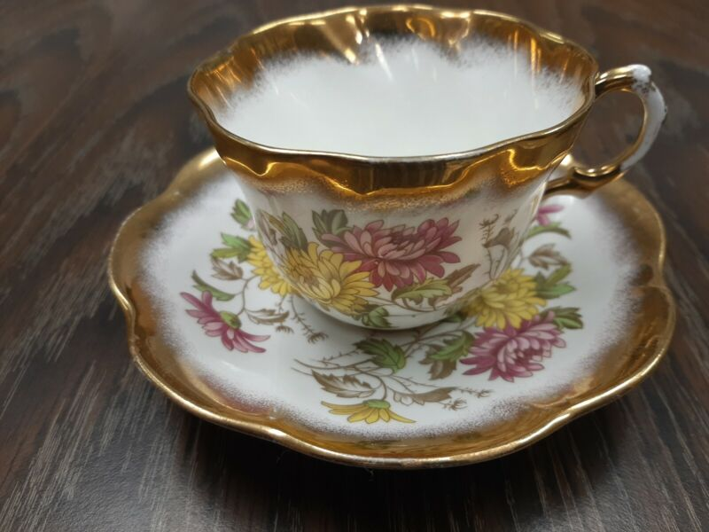 Rosina English Bone China Teacup & Saucer Excellent condition flowers and gilt