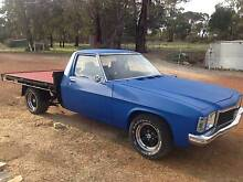 1979 Holden HOLDEN one tonnerUte Toodyay Toodyay Area Preview
