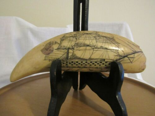 PMS Artex Resin Replica Scrimshaw Whale