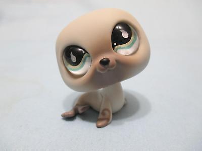 Littlest Pet Shop Seal Sea Lion 637 Authentic (Sea Lion Seal)
