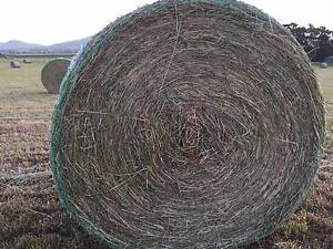 Grass HAY suitable for Horses Richmond Clarence Area Preview
