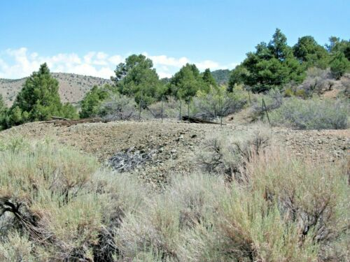 Nevada Gold Silver Mine Historic Comstock Mining Claim Adit Shaft Pit NV Au