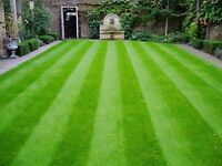 Affordable lawn and yard care