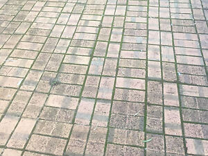 Driveway pavers CHEAP Adelaide CBD Adelaide City Preview