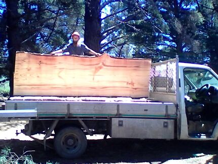 Massive radiarta and macrocarpa pine slabs off the saw..