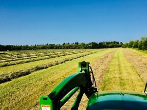 Wanting hay land to rent