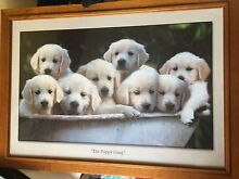 Framed pictures/artwork High Wycombe Kalamunda Area Preview