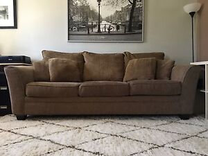 Couch & Area Rug