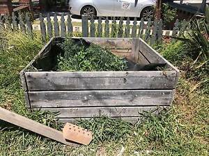 Free vegetable pot garden bed Kingsford Eastern Suburbs Preview