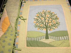 Beautiful Land of Nod crib quilt and bumper set