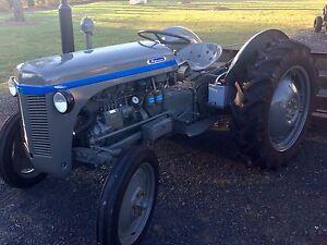 TEF 20 Massey Ferguson tractor Walloon Ipswich City Preview