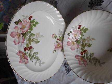 "Clarice Cliff Royal Staffordshire Dinner ""Polly Ann' plates x 11"