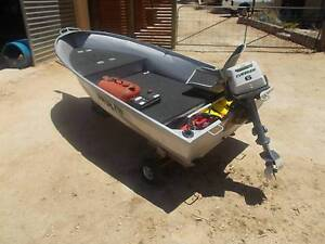 Registered Tinny/dinghy Roof topper and 2 Evinrude outboards Roleystone Armadale Area Preview