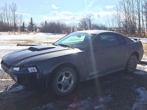 2003 Ford Mustang *Damaged but Drivable*