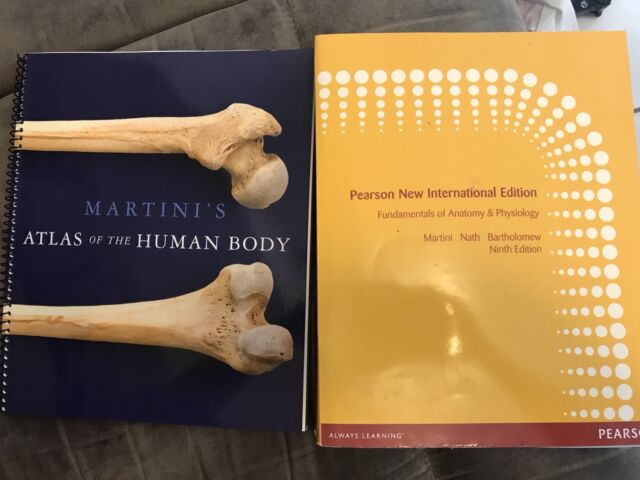 Fundamentals of Anatomy & Physiology & Atlas of the Human Body ...