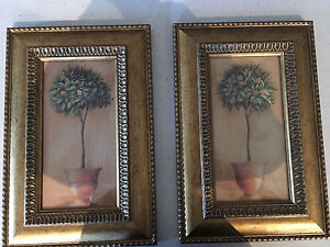 Framed citrus topiary prints Leeming Melville Area Preview