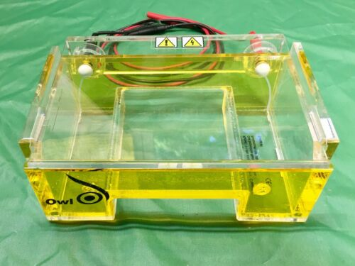 Owl B1 Electrophoresis Gel Box with Cover and Cables