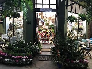 Florist/ cafe Burwood Heights Burwood Area Preview