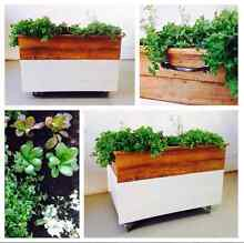 Rustic Planter box - mobile & weatherproof hardwood Manly Vale Manly Area Preview
