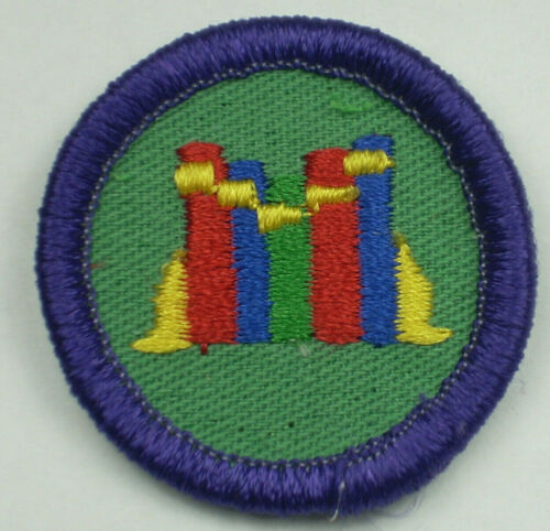 Vintage Girl Scout Badge - Books - 1980-2001 - retired