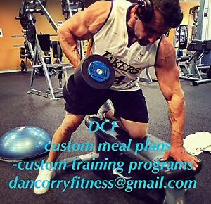 Online personal trainer/program writer East Maitland Maitland Area Preview