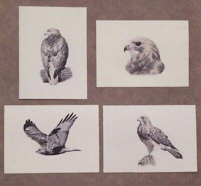 Set of 12 Handmade Blank Hawk Print Note Cards