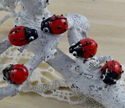5 Lampwork Marienkäfer Glasperlen Rot Schwarz 14mm  Perlen basteln,