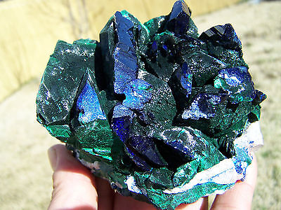 Museum 4 25  Huge Blue Azurite Crystals W Malachite  Milpillas  Mexico