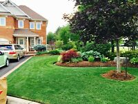 APC QUALITY LANDSCAPING ,GRASS CUTTING